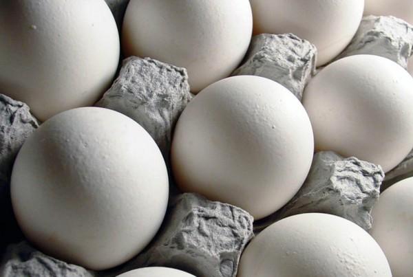 mitos sobre el huevo