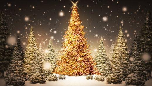 ¡Nochebuena! El primer entrante de toda una serie de fiestas navideñas